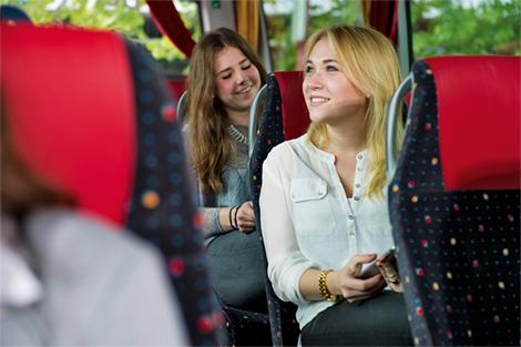 berlinlinienbus ausstattung