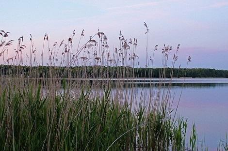 Kanutour Mecklenburgische Seenplatte