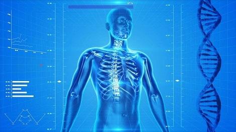 wissenschaftliche datenbanken im bereich medizin