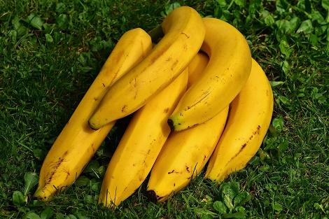 In Klausuren Essen und Trinken Bananen